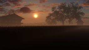 Fält av guld- vete i solnedgång Royaltyfria Bilder