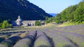 Fält av lavendel framme av abbotskloster Arkivfoto