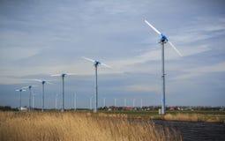 Fält av moderna maktväderkvarnar i Nederländerna Arkivfoton