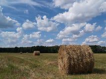 Fält av nytt baler av hö, Polen Arkivbilder