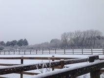 Fält av snö Fotografering för Bildbyråer