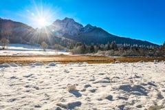 Fält av snö på den Zelenci och inställningssolen Arkivbild