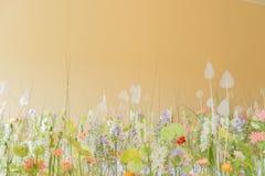 Fält blommaäng Intryck av naturen royaltyfria foton