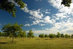 fält för 4 lantgård Arkivfoto