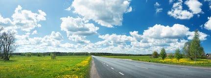 Fält för asfaltväg och maskros Arkivbilder