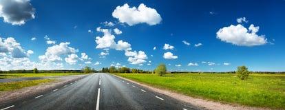 Fält för asfaltväg och maskros Arkivfoton