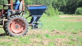 Fält för bondesuggakorn stock video