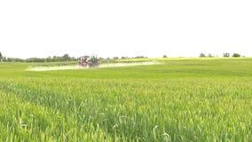 Fält för grön skörd för säsong för sommar för sprej för lantgårdtraktor stock video