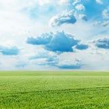 Fält för grönt gräs och blå himmel med moln royaltyfri bild