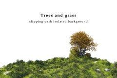 Fält för grönt gräs och trädlandskap Arkivfoto