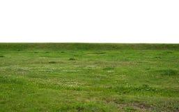 Fält för grönt gräs som isoleras på vit bakgrund Arkivbild