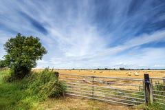 Fält för höbaler Arkivbild