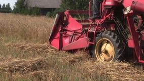 Fält för korn för Retro skördetröskaavfall moget i sommar arkivfilmer