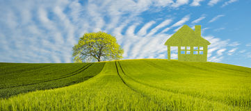 Fält för panoramavårgräsplan, begreppet av gräsplan, ekologiskt hus som byggs av sidor arkivbild
