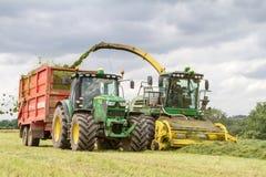 Fält för skördearbetareforagerklipp, päfyllningsensilage in i en traktorsläp arkivbild