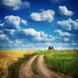 Fält för för sommarlandsväg och wheath Arkivbilder