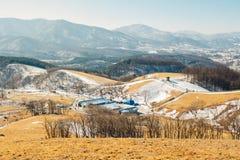 Fält för torrt gräs och berg och snö och vinterlandskap i den Daegwallyeong fårranchen, Korea Arkivfoton
