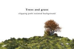 Fält för torrt gräs och isolerat trädlandskap Royaltyfria Bilder