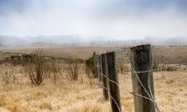 Fält för torrt gräs på Hearst San Simeon State Park Arkivfoton