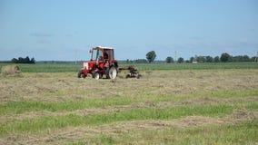 Fält för traktorted hö stock video