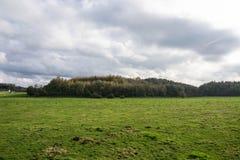 Fält, höst och färger Arkivfoton