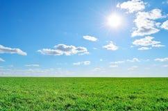 Fält, himmel och sol Royaltyfri Bild