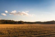 Fält i Finland Arkivfoton