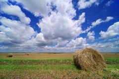 Fält i Juni efter kornplockningen Rolls av sugrör på skördat fält av korn i Rumänien Royaltyfri Fotografi