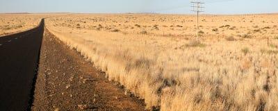 Fält i norden av South Africa Royaltyfri Fotografi