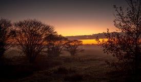 Fält i soluppgången i staden av Blaricum Arkivbild