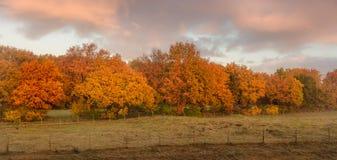 Fält i soluppgången i staden av Blaricum fotografering för bildbyråer