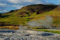 Fält i Thingvallavatn, söder av Island Arkivfoto