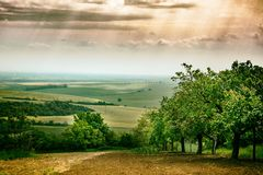 Fält i Tjeckien arkivfoto