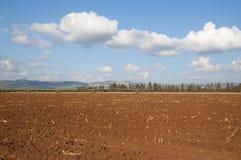 Fält i västra Galilee Arkivfoton