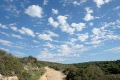 Fält, kullar och härlig himmel i Judea, Israel royaltyfria bilder