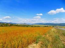 Fält, kullar och himmel Royaltyfria Foton