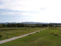 Fält längs den lantliga vägen i Slovenien arkivbilder