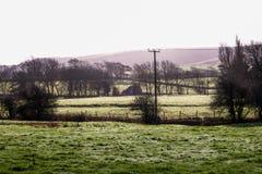 Fält, lantgården och söder besegrar frost på jordningen Arkivbilder