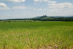 Fält med det Trosky slottet Arkivfoton