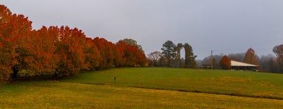 Fält med ladugården på dimmig morgon arkivbild
