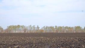 Fält med plogat land stock video