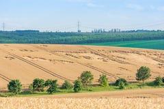 Fält med skördförluster följaktligen av en stark storm på en kulle som lokaliseras i lantlig region arkivbilder