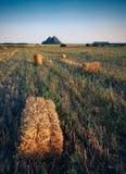 Fält med slagheap på horisont Arkivfoto