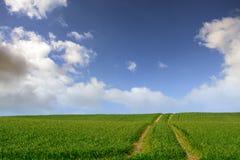 Fält med traktorspår mot blå himmel med vita moln Arkivfoton