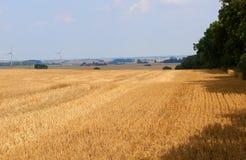 Fält med vindturbiner Arkivbild