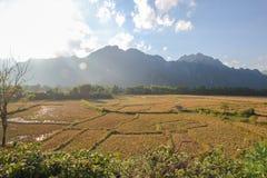 Fält och berg och stuga Royaltyfri Foto