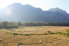 Fält och berg och stuga Royaltyfria Bilder