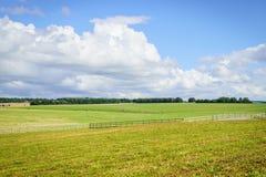 Fält och blå himmel med molnet Fotografering för Bildbyråer