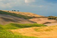 Fält och fred i den varma solen av Tuscany, Italien Arkivbilder