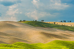 Fält och fred i den varma solen av Tuscany, Italien Arkivfoton